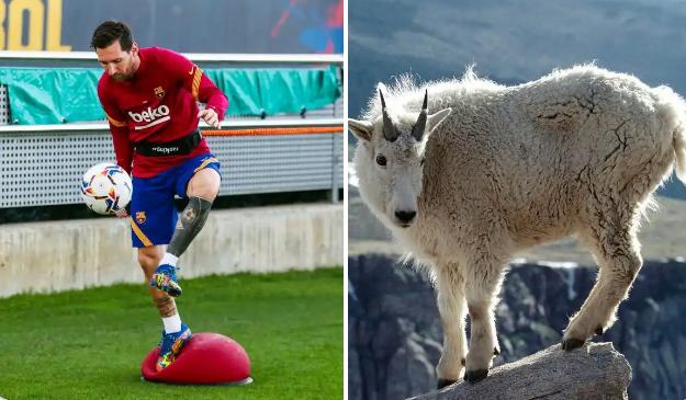 Barcelona footballer Lionel Messi
